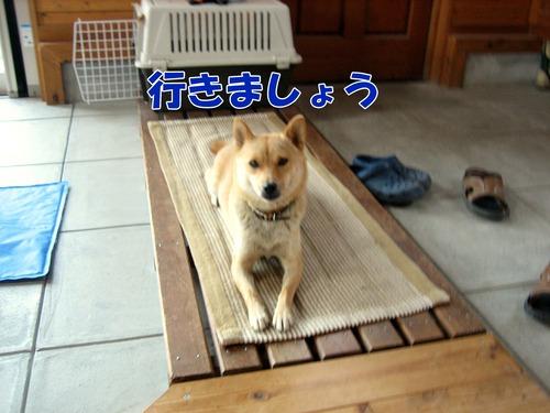 IMG_7467ブ.jpg