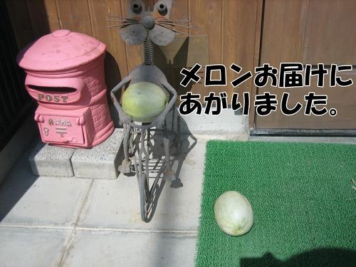 IMG_7774ブ.jpg
