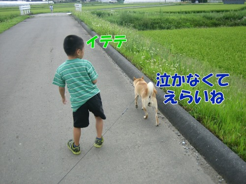 IMG_7884ブ.jpg