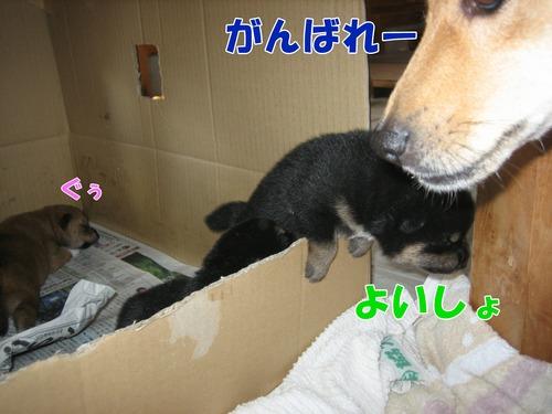 IMG_8154ブ.jpg