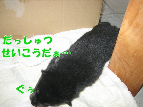IMG_8158ブ.jpg