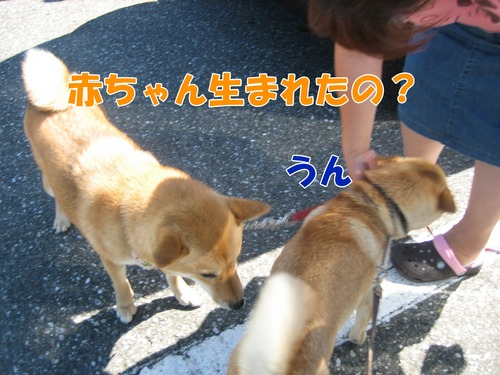 IMG_8402ブ.jpg