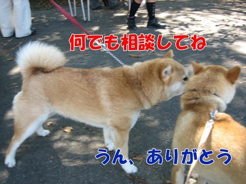 IMG_8425ブ.jpg
