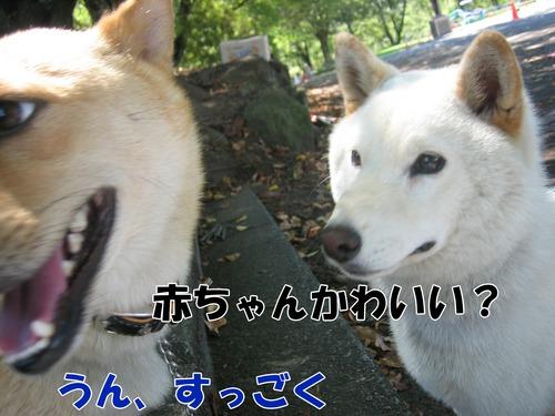 IMG_8454ブ.jpg