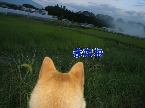 IMG_8622ブ.jpg