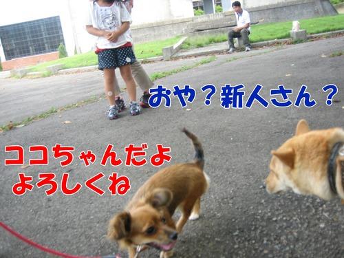 IMG_8775ブ.jpg