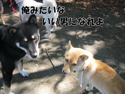 IMG_9597ブ.jpg