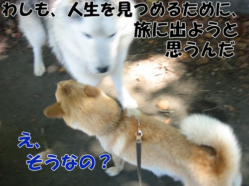IMG_9599ブ.jpg