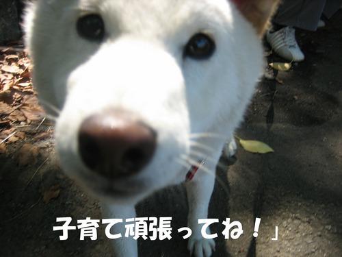 IMG_9601ブ.jpg