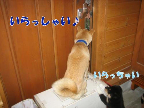 IMG_9866ブ.jpg