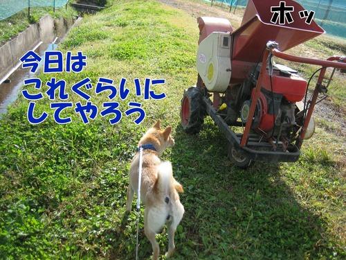 IMG_0893ブ.jpg