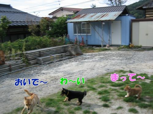 IMG_0904ブ.jpg