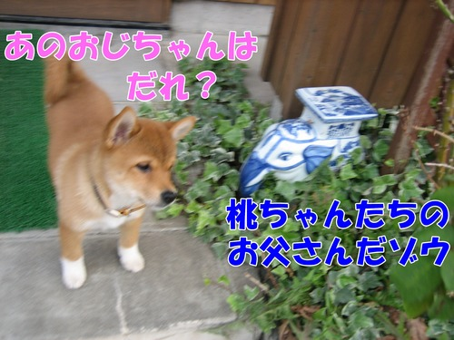 IMG_1207ブ.jpg