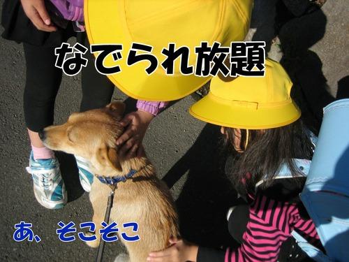 IMG_1326ブ.jpg