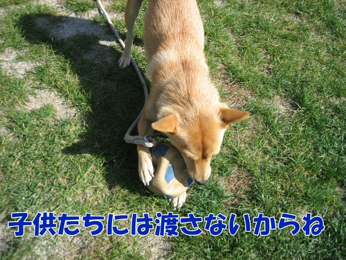 IMG_1569ブ.jpg