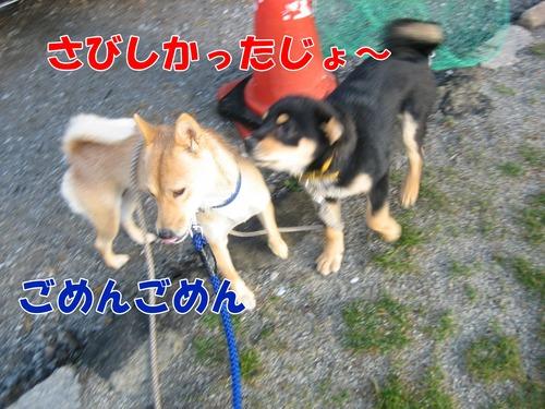 IMG_2681ブ.jpg