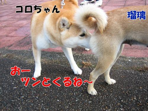 IMG_2698ブ.jpg