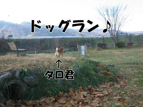 IMG_2828ブ.jpg