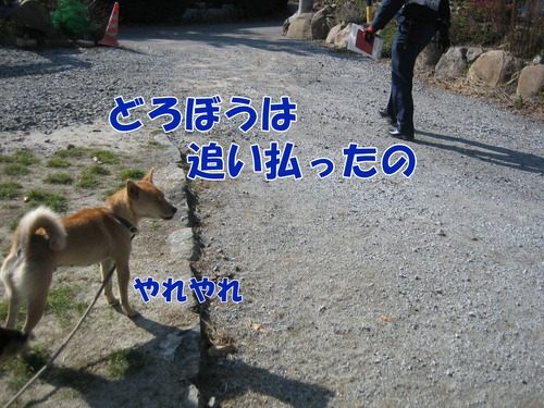 IMG_2964ブ.jpg