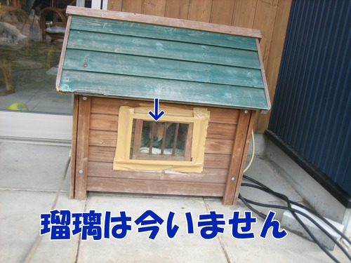 IMG_3038ブ.jpg