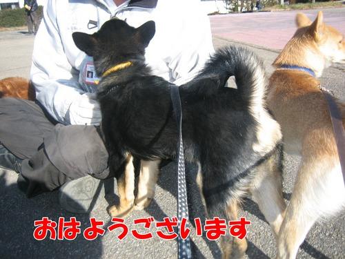IMG_3057ブ.jpg