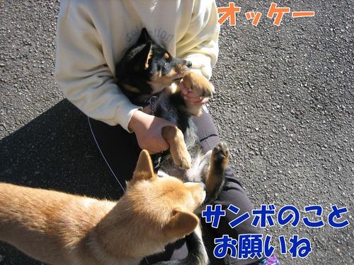 IMG_3127ブ.jpg