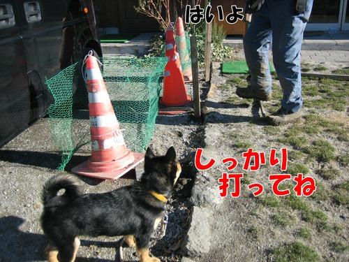 IMG_3293ブ.jpg