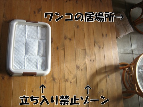 IMG_3404ブ.jpg