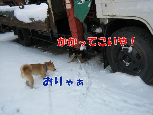 IMG_3506ブ.jpg