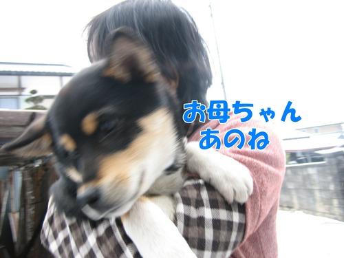 IMG_3527ブ.jpg
