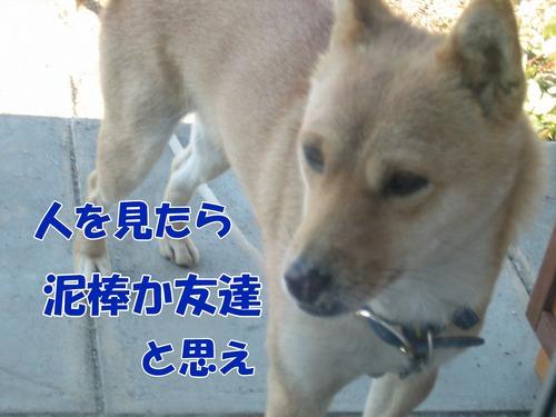 IMG_3550ブ.jpg