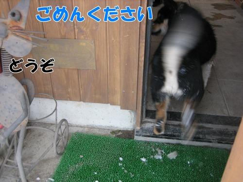 IMG_3869ブ.jpg