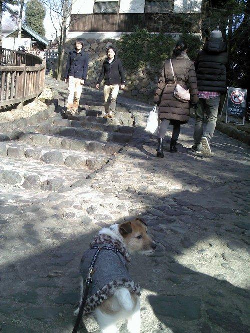 入場不可 犬山城Picture021013_144655.jpg